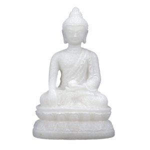 boeddha shakyamuni mudra