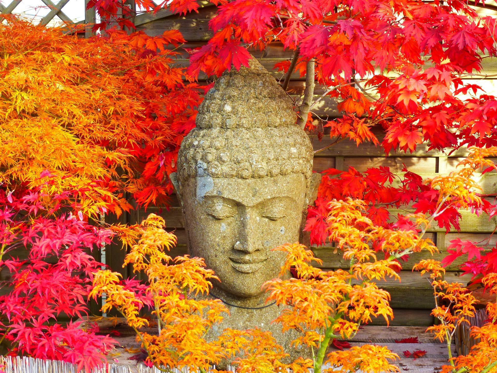 Boeddha.online: Boeddhashop met een beetje extra