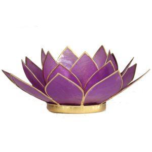 lotus sfeerlicht lila
