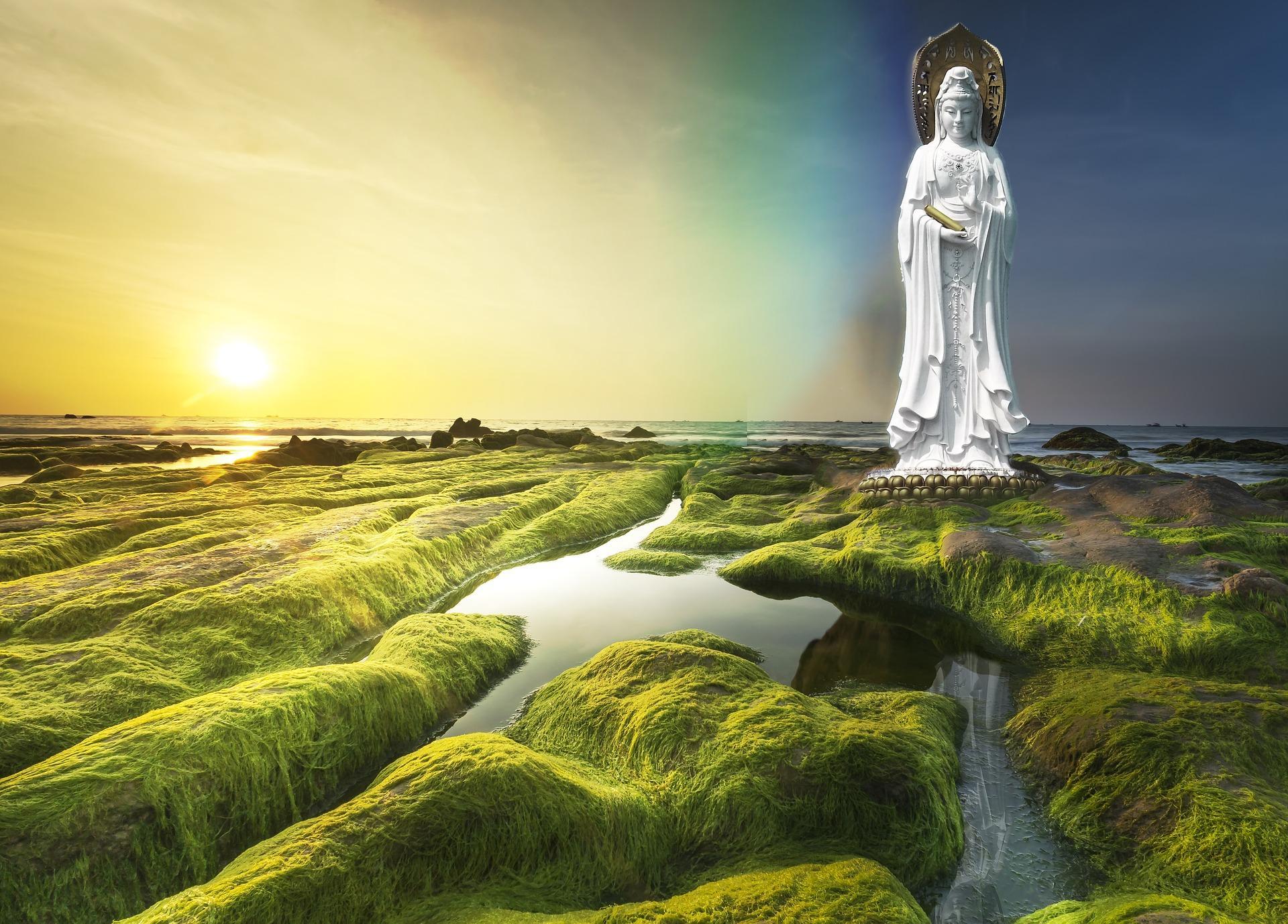 Mededogen en altruïsme brengen rust en vrede in je geest